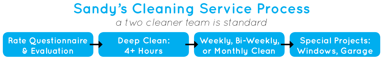 cleaning service process